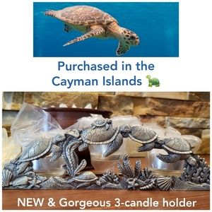 NEW Turtle Candle Holder from the Cayman Islands